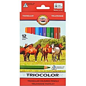 Цветные карандаши Koh-i-Noor трехгранные Triocolor 3142/12
